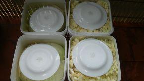 Снимка 3 от рецепта за Кисело зеле за зимата