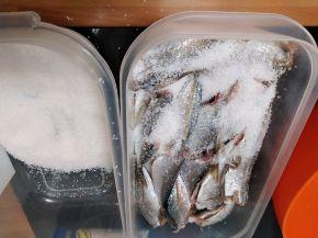 Снимка 3 от рецепта за Маринован сафрид