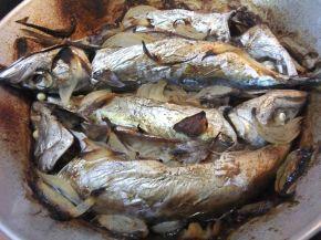 Снимка 3 от рецепта за Печена скумрия с лук във фурна