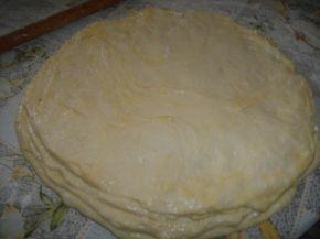 Снимка 2 от рецепта за Питка с орехи и сирене