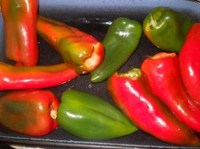 Снимка 3 от рецепта за Пълнени пиперки с кайма, розмарин и мащерка