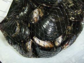 Снимка 9 от рецепта за Рибена чорба `Ники`