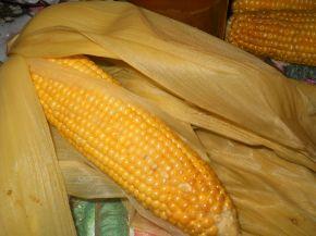 Снимка 3 от рецепта за Сьомга в мексикански стил