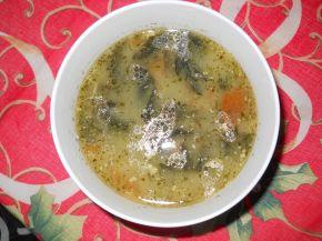Снимка 2 от рецепта за Супа от сушена коприва