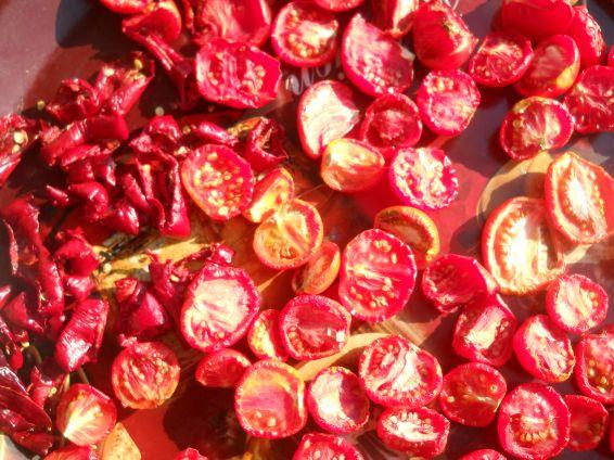Снимка 1 от рецепта за Сушени доматки