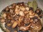 Рецепта за Домашно мариновани гъби
