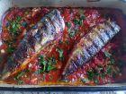 Рецепта за Скумрия на скара в доматен сос